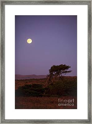 California Moon Framed Print