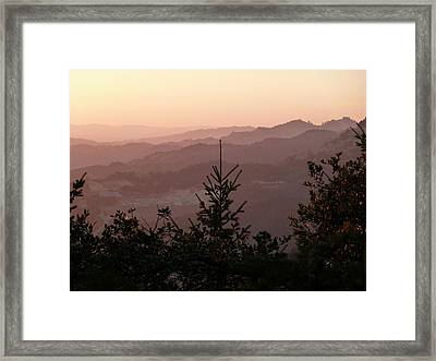 California Napa - Cakebread Sunset 1 Framed Print by Benjamin Weinberg