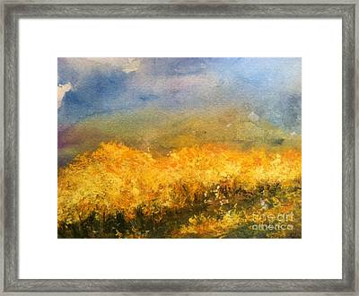 California Orchards Framed Print by Sherry Harradence