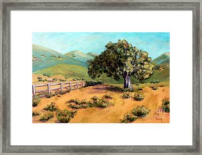 California Poppies II Framed Print