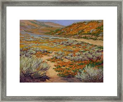 California Poppies Framed Print by Jane Thorpe