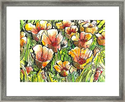 California Poppies Framed Print