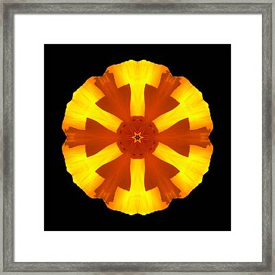 Framed Print featuring the photograph California Poppy Flower Mandala by David J Bookbinder