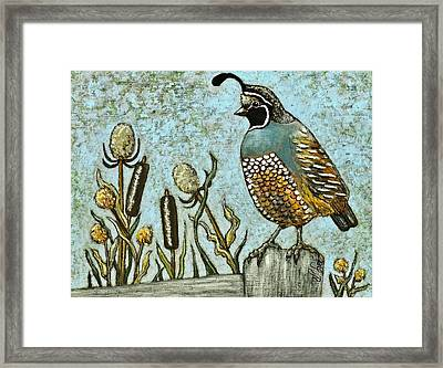 Framed Print featuring the painting California Quail by VLee Watson