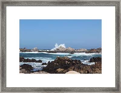California See Harbor  Framed Print by Elena Wells
