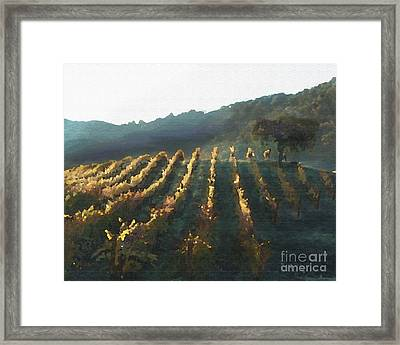 California Vineyard Series Wine Country Framed Print