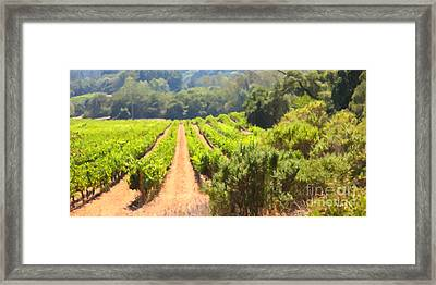 California Vineyard Wine Country 5d24518 Long Framed Print by Wingsdomain Art and Photography