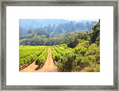 California Vineyard Wine Country 5d24518 Framed Print by Wingsdomain Art and Photography