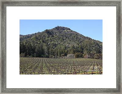 California Vineyards In Late Winter Just Before The Bloom 5d22142 Framed Print
