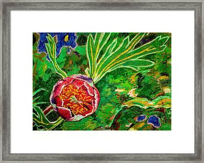 California Wild Peony Framed Print