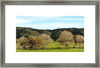 California Winter Landscape Framed Print by Susan Wiedmann
