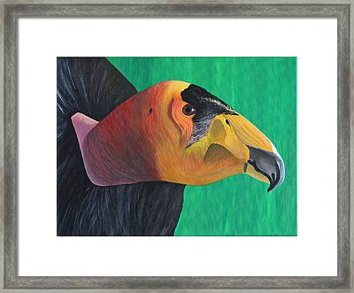Californian Condor Framed Print by Aileen Carruthers