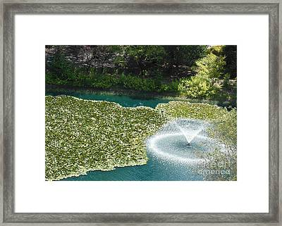 Calistoga Summer Framed Print