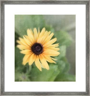 Call Me Mellow Yellow Framed Print