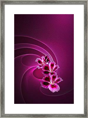 Framed Print featuring the photograph Call Me Pink by Judy  Johnson