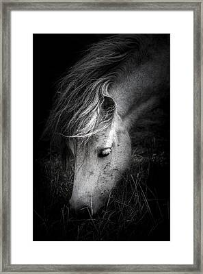 Call Me The Wind Framed Print by Shane Holsclaw