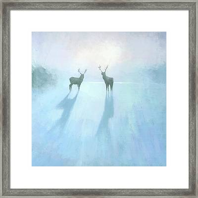 Call Of The Arctic Framed Print by Steve Mitchell