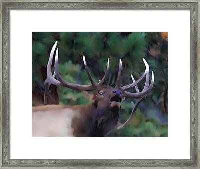 Call Of The Wild Framed Print by Shane Bechler