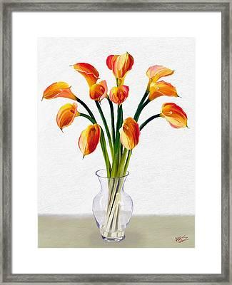 Calla Lillies Framed Print by James Shepherd