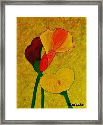 Calla Lilly Framed Print