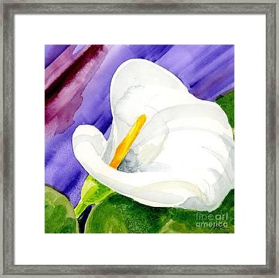 Calla Lily Close Up Framed Print