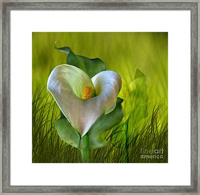 Framed Print featuring the digital art Calla Lily Glow by Shirley Mangini