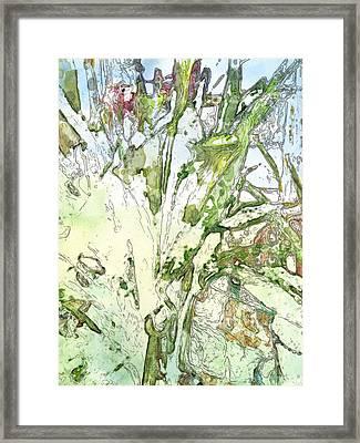 Callas Framed Print by Jennifer Woodworth
