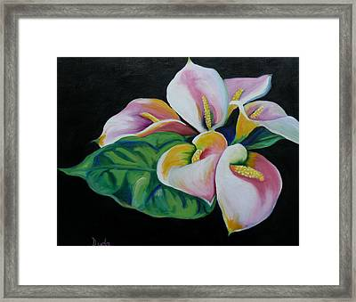 Callas Framed Print by Susan Duda