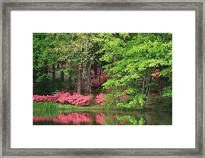 Framed Print featuring the photograph Callaway Gardens 1 by Mountains to the Sea Photo
