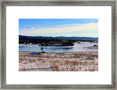 Calling All Skaters Framed Print by Barbara Griffin