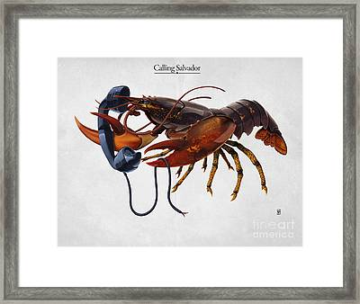 Calling Salvador Framed Print by Rob Snow