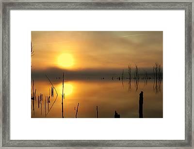 Calm At Dawn Framed Print