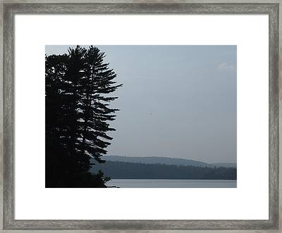 Calm Before The Storm Framed Print by Chrissy Dame