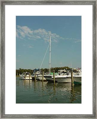 Framed Print featuring the photograph Calm Day At The Marina by Dorothy Maier