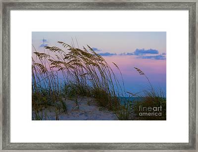 Calm Evening Framed Print by Matthew Trudeau