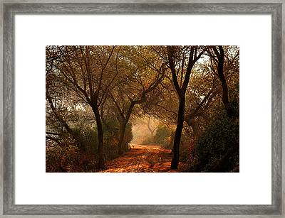 Calm Nature As Fantasy  Framed Print by Manjot Singh Sachdeva