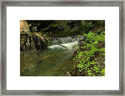 Calm Rapids Framed Print by Jeff Swan