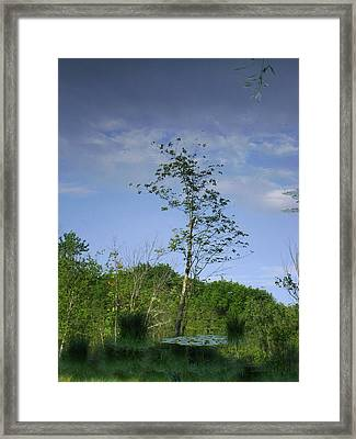 Calm Reflecting Moment Framed Print