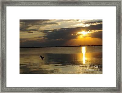 Calm Sunset Framed Print by Tannis  Baldwin