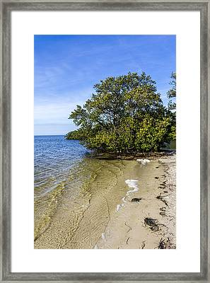 Calm Waters On The Gulf Framed Print