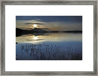 Calma Framed Print