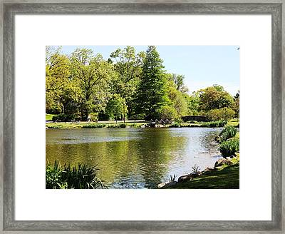 Framed Print featuring the photograph Calming  by Judy Palkimas