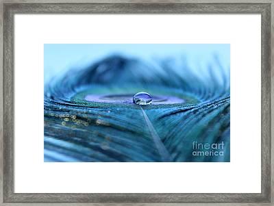 Calmness Framed Print by Krissy Katsimbras