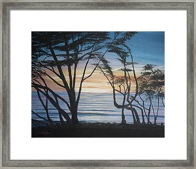 Cambria Cypress Trees At Sunset Framed Print