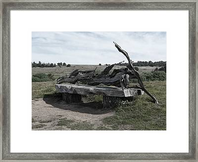Cambria Driftwood Benches1 Framed Print