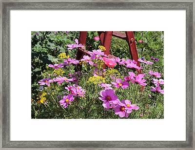 Cambria Garden 2 Framed Print