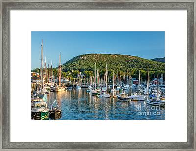 Camden Windjammers Framed Print by Susan Cole Kelly