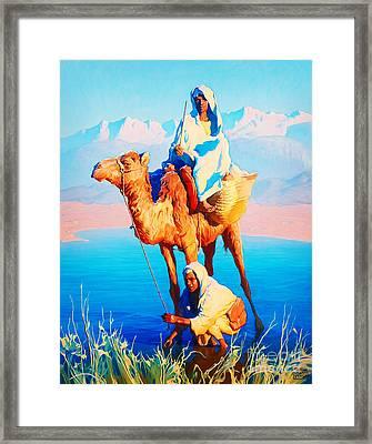 Camel Driver Framed Print