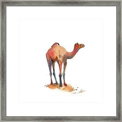 Camel I Framed Print