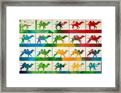 Camel Locomotion Framed Print by Aged Pixel